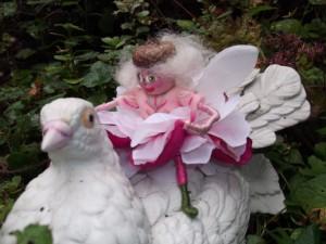 Precious Pink Fairy